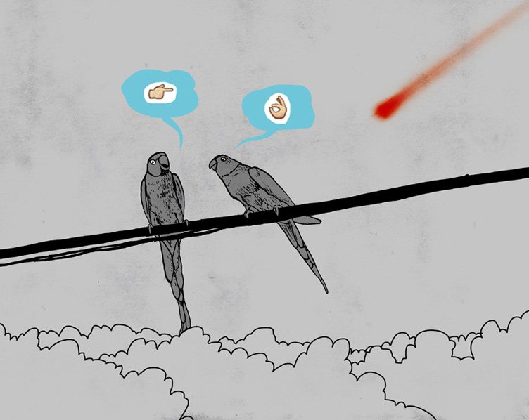 parrots-and-comets